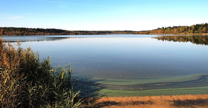 Озеро Долгое в Московской области