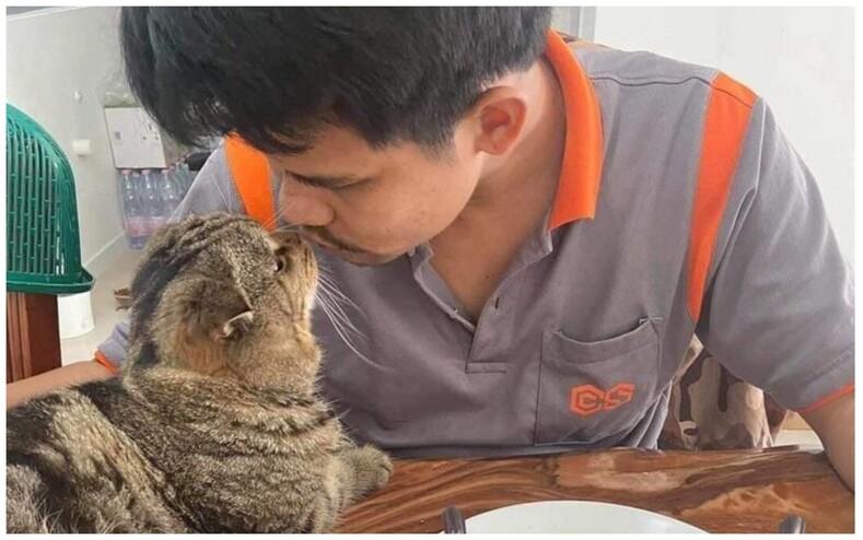 Этот кот увел моего мужа смешные фото ревнивого кота, который одним взглядом дает понять  никто не может приближаться к его человеку