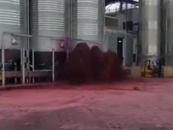 Испанский завод затопило красным вином (ВИДЕО)