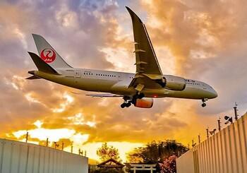 Japan Airlines отказывается от фразы «дамы и господа» при обращении к пассажирам