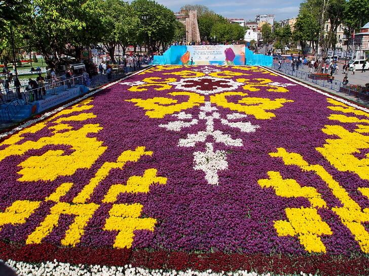 Тюльпановый ковёр на площади Султанахмет