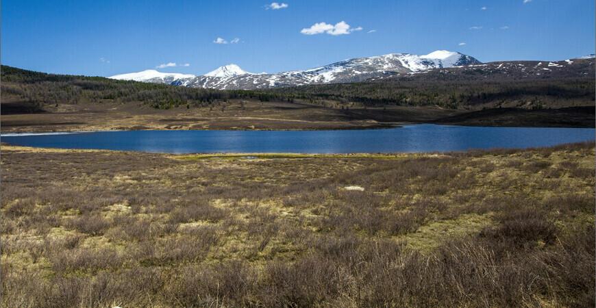 Мёртвое озеро на Алтае