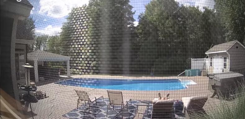 Мужчина уснул на заднем дворе своего дома, но был разбужен косолапым гостем кадры с камеры видеонаблюдения
