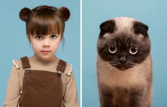 10 поразительных фото, где коты как две капли воды похожи на людей