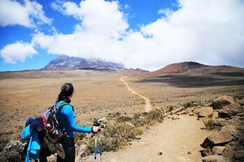 На горе Килиманджаро бушуют лесные пожары