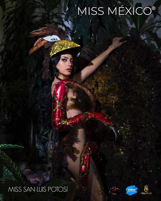 Конкурс красоты Мисс Мексика - 2020: самые запоминающиеся наряды участниц