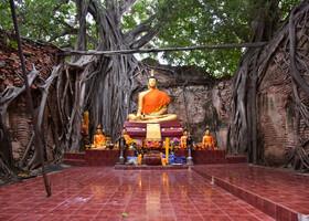 Корни Таиланда, часть 2-ая
