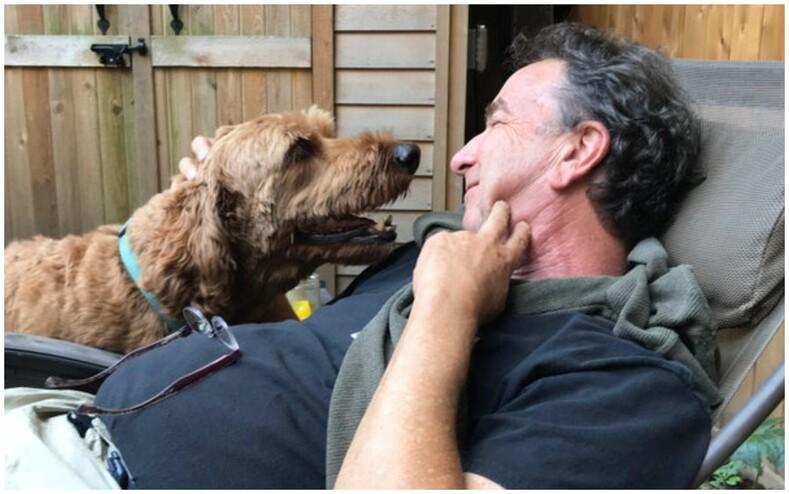 Янехочу, чтобы вмоем доме были собаки и кошки!: фото суровых пап, сменивших гнев на безграничную любовь
