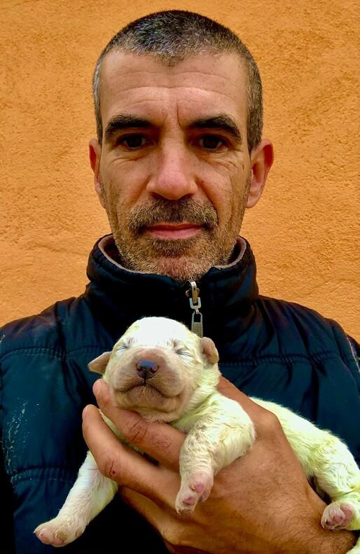 Кристиан Маллокчи с щенком Фисташкой