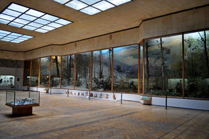 В биологическом зале музея Ильменского заповедника