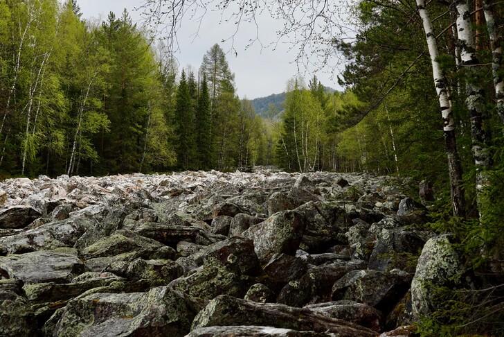 Большая каменная река в Национальном парке «Таганай»
