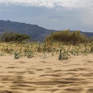 Белое сонце пустыни. Бархан Сарыкум