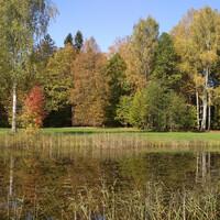 Осень в Святогорье