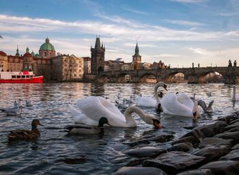 В Чехии отменён комендантский час