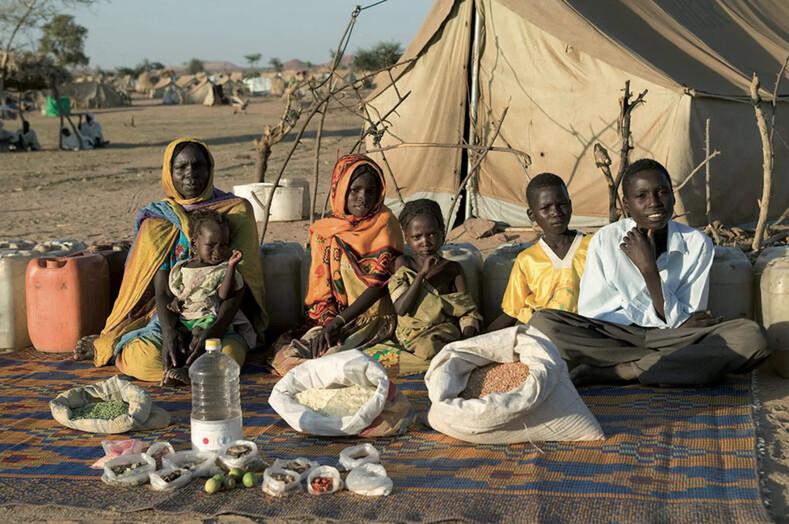Скромные запасы зерна или большие порции мяса: фотограф снял семьи из разных стран и те продукты, которые они съедают за неделю