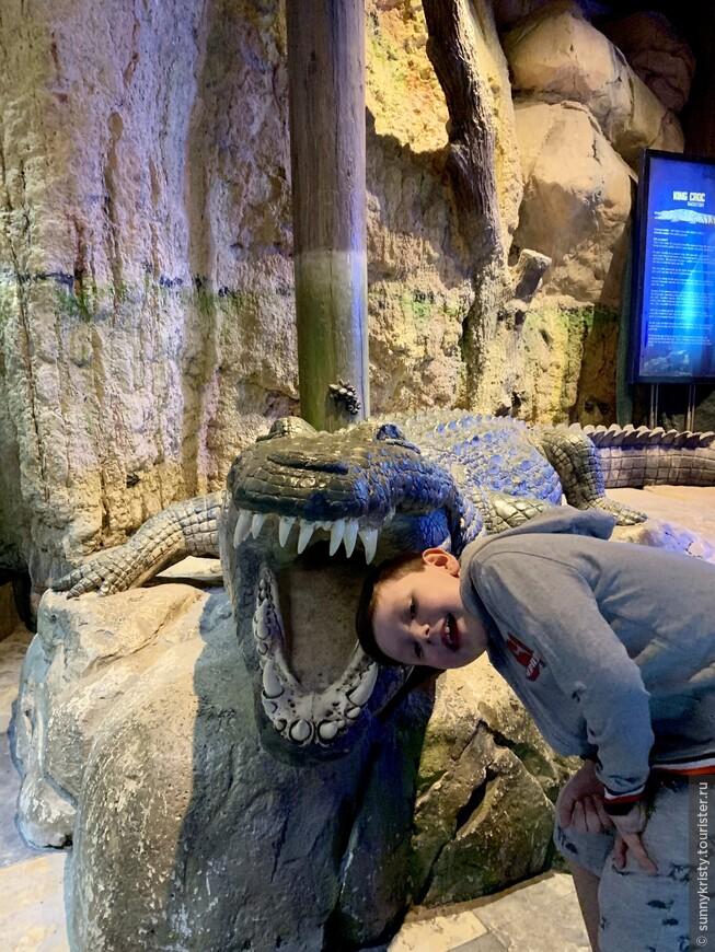 Аквариум в Дубае. Часть зоопарка.