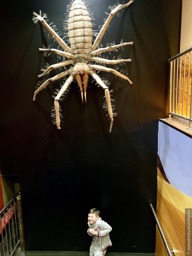 Аквариум в Дубае. Макет огромного паука. Прикольно для фото.