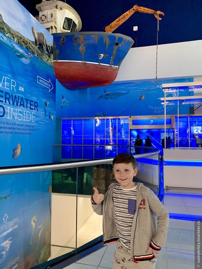 Аквариум в Дубае. Перед входом в зоопарк на последнем этаже мола.