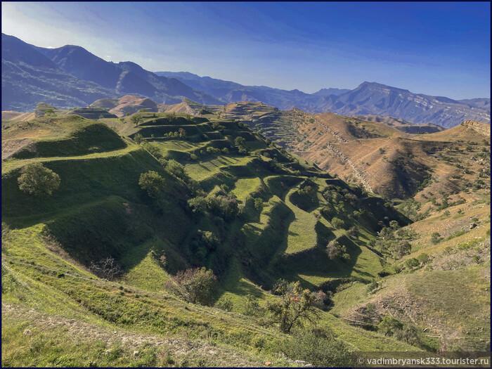 Когда б еще я поехал в Дагестан..