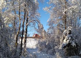 Мороз и солнце, день чудесный!