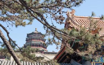 Китай из-за COVID-19 закрыл на карантин два города