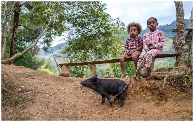 Фотограф показал, как выглядит детство в разных уголках земного шара (снимки, которые пронзают сердце своей искренностью и красотой)