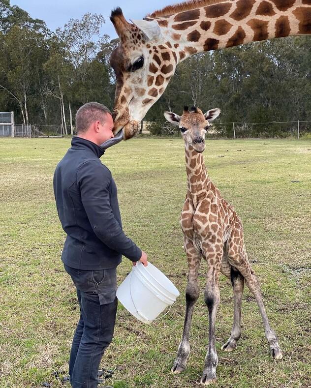 Профессия - смотритель парка дикой природы: австралиец показывает свои будни