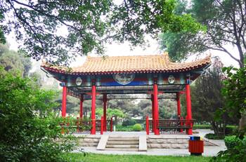 Город в Китае закрыли из-за одного заболевшего COVID-19
