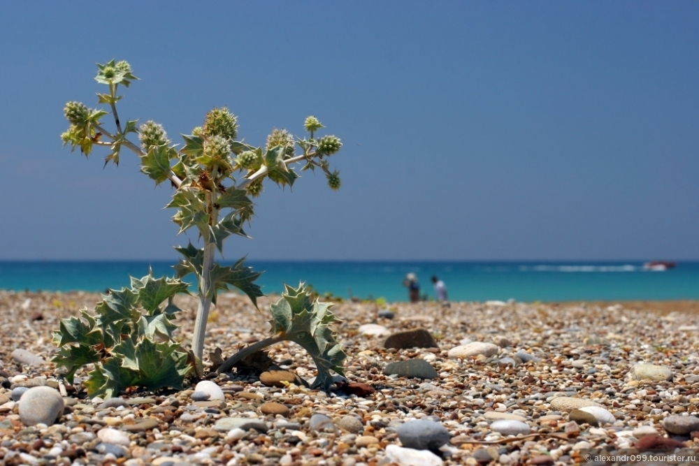 курорты на средиземном море фото