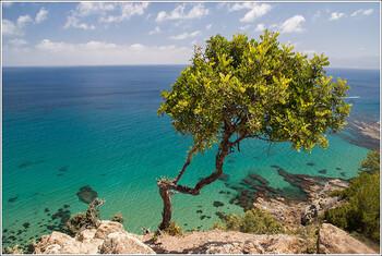 Кипр с 1 марта откроет границы для туристов из 56 стран, в том числе из России