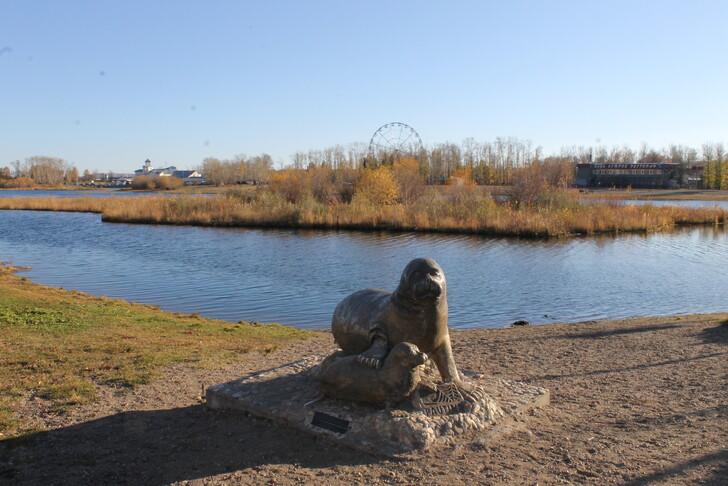 Вид на парк «Остров Юности»