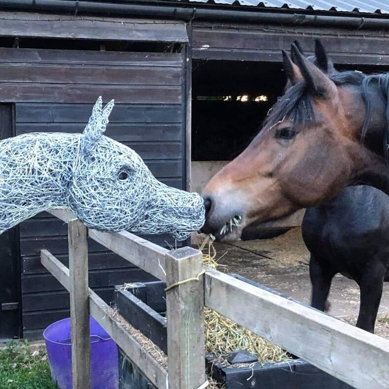 Лошадь из проволоки в полный рост девушка создает максимально реалистичные скульптуры животных, и эти снимки как доказательство