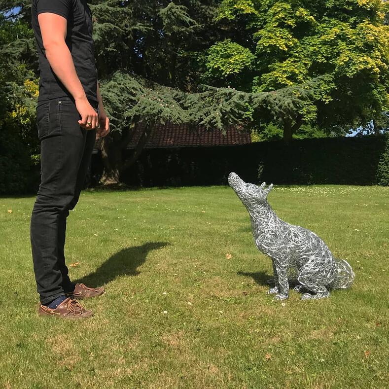 Лошадь из проволоки в полный рост: девушка создает максимально реалистичные скульптуры животных, и эти снимки как доказательство