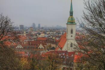 В Словакии продлили режим ЧС на 40 дней