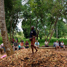 Сад специй на Занзибаре