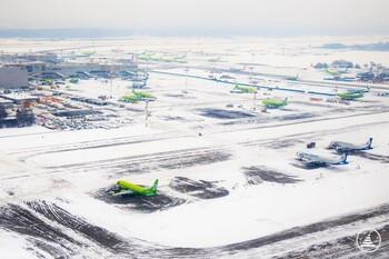 Снегопад привёл к задержке более 60 рейсов в аэропортах Москвы
