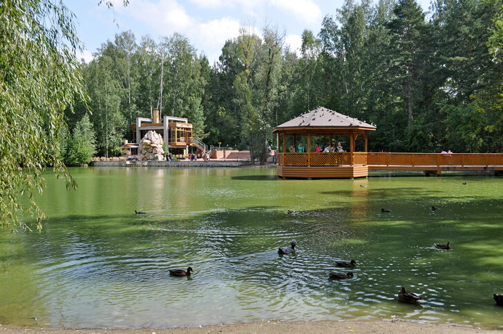 Пруд Новосибирского зоопарка