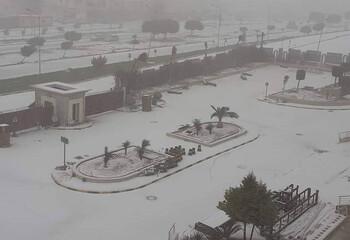 В Египте и Ливии выпал снег