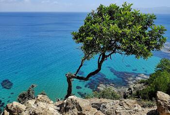 Кипр перенёс открытие въезда для россиян на 1 апреля