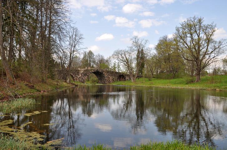 Чертов мост в Василёво