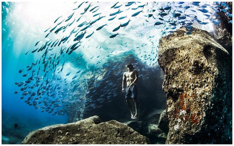 Объявлены победители World Nature Photography Awards: лучшие снимки природы из разных уголков мира, от которых невозможно оторвать взгляд