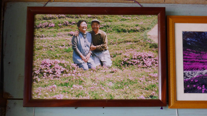 Мужчина посадил у дома 1000 цветов, чтобы спасти жену от депрессии: женщина практически потеряла зрение и отказывалась выходить из дома