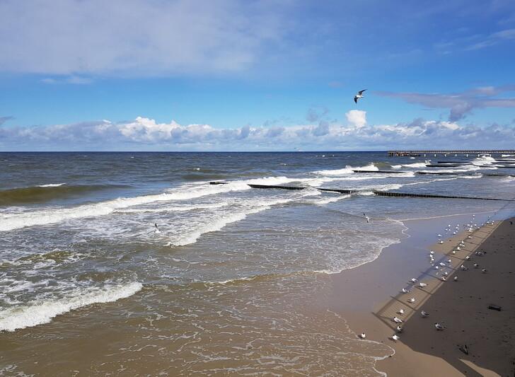 Балтийское море в Зеленоградске