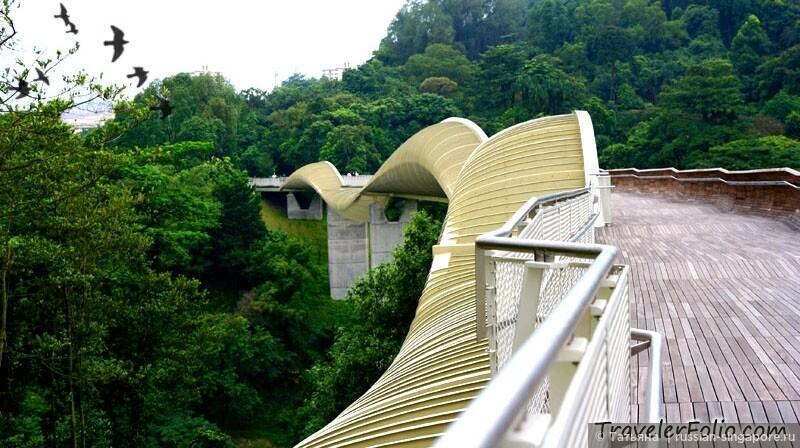 henderson_waves_bridge.jpg