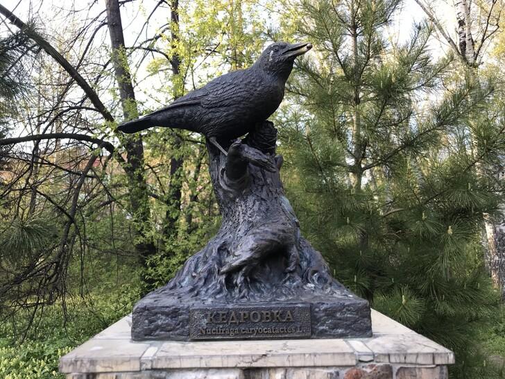 Памятник кедровке — птице, дающей жизнь кедровым лесам