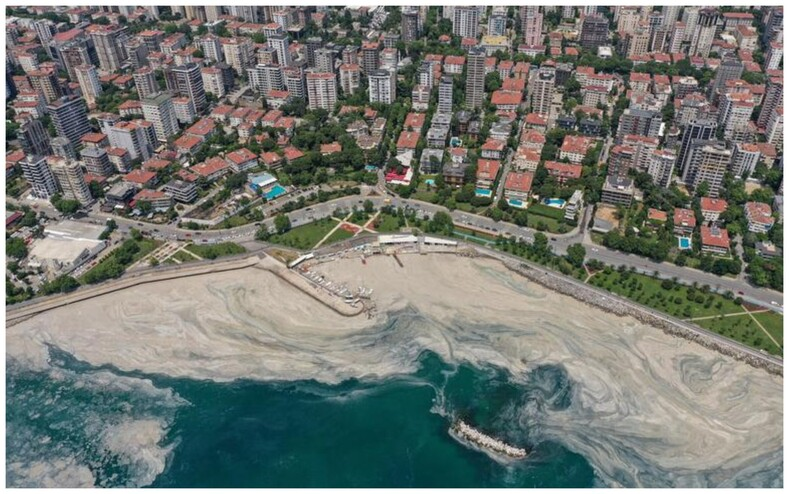 Мраморное море в Турции пожирает слизь, которая постепенно убивает все живое в воде: ужасающие фото экологической катастрофы