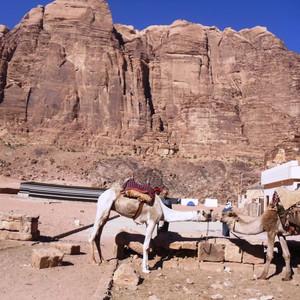 Разноцветная пустыня Вади Рум