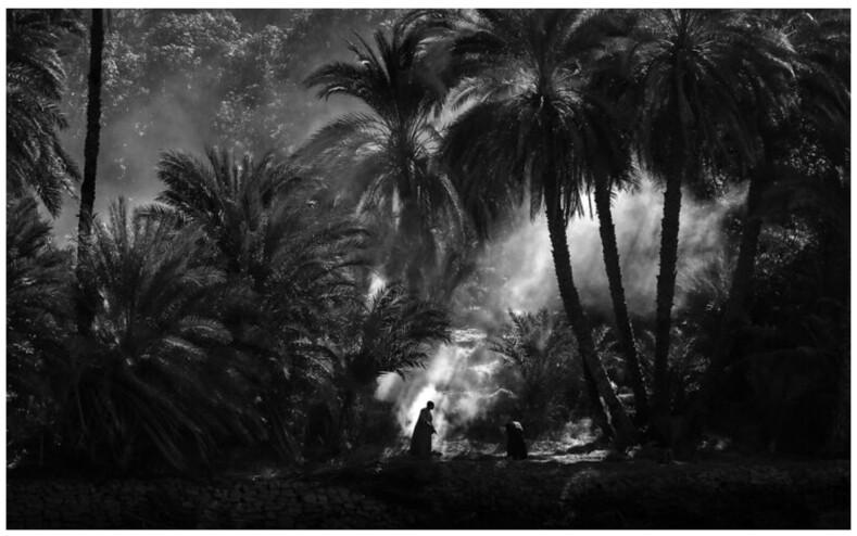 14 фантастических работ мирового конкурса Creative Photo Awards 2021: философия и красота мгновений, пойманных на фотопленку