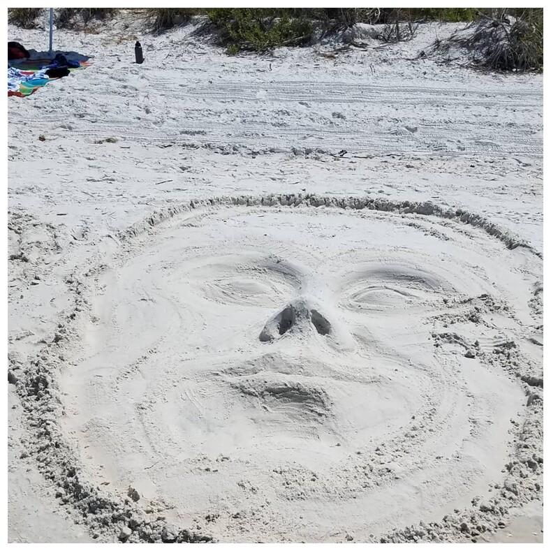 Необычные вещи, увиденные на пляже 16 удивительных находок, которые сделали отдых еще интереснее