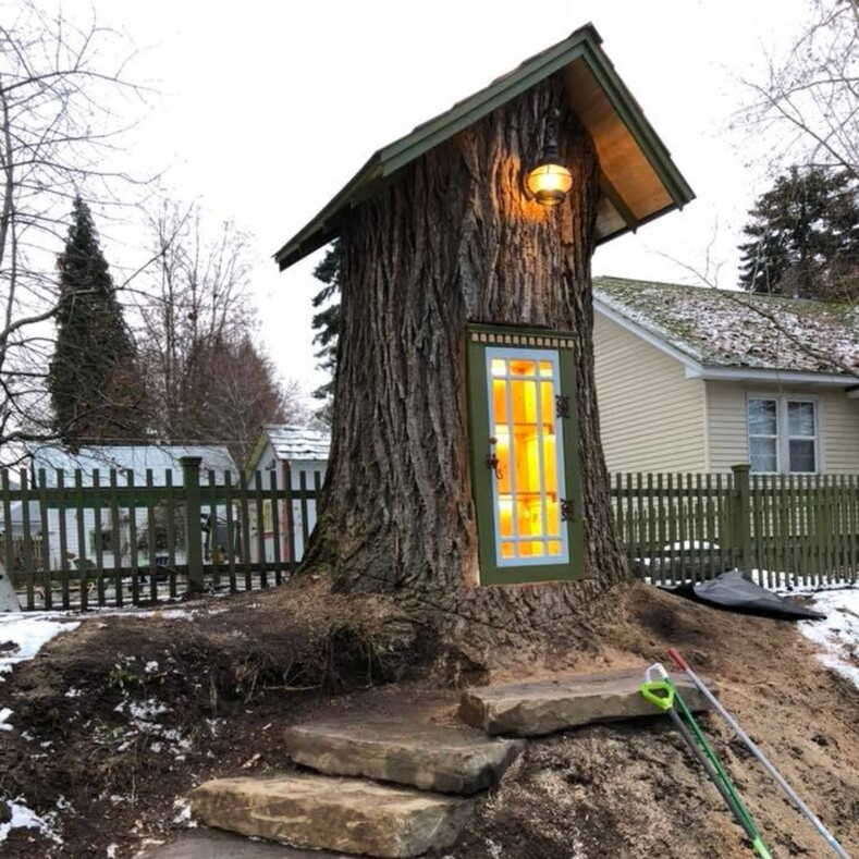 Женщина превратила 110-летнее дерево в библиотеку, удивив этим весь город: фото сказочной достопримечательности